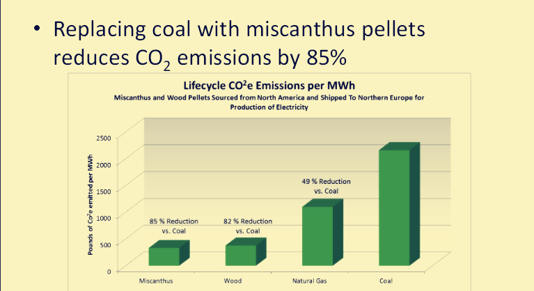 replacing coal with miscanthus pellets reduces co2 emission